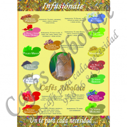 Póster Infusiones Tes Albolote